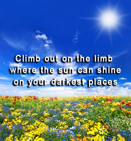 Climb out on a limb